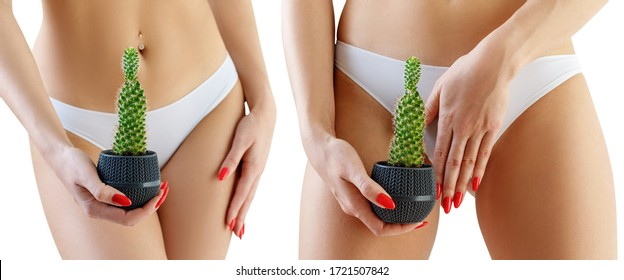 Collage of woman holds a green cactus over her white panties background. Depilation concept.