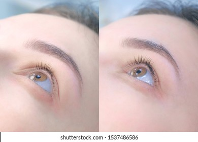Collage of woman's eye before and after lashes lifting and lamination, closeup view. Result of beauty procedure of eyelashes lift and laminating. Long and voluminous eyelashes.