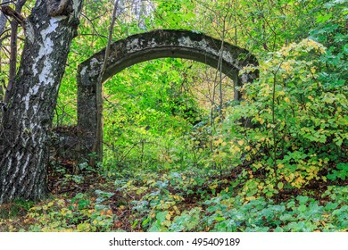 Collapsed building door arch in the forest