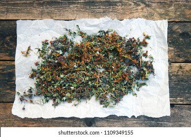 Collect dry herbs such as St. John's wort, matryoshka, currant leaves, mint, lemon balm