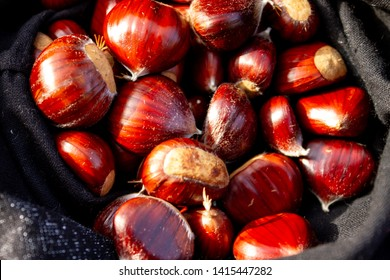 Collected chestnuts in a bag