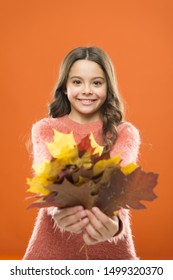 Collecting leaves. Cute happy smiling kid playing with leaves. Botany concept. Natural treasures. Color pigment. Changes in nature. Happy little girl with maple leaves. Small child hold autumn leaves.