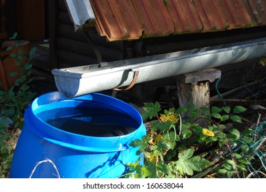 Collecting rainwater for watering the garden