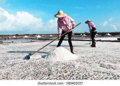 Collecting salt on salt pans along Tainan coast, Taiwan.