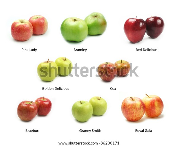Collection of apples on white background