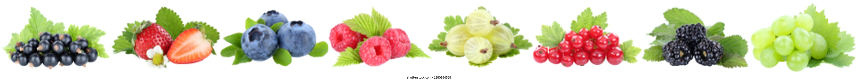 Collection of berries strawberries blueberries grapes berry fruits fruit in a row isolated on a white background