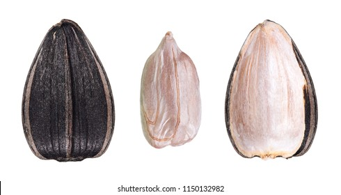 Collection of black sunflower seed and peeled sunflower seed isolated on white background - close-up.