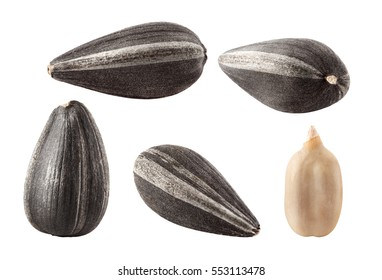 Collection of black sunflower seeds isolated on white, clipping path