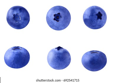 Collection of blueberries isolated on white background  with clipping path as package design element.