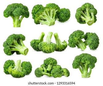 Collection Broccoli isolated on white background