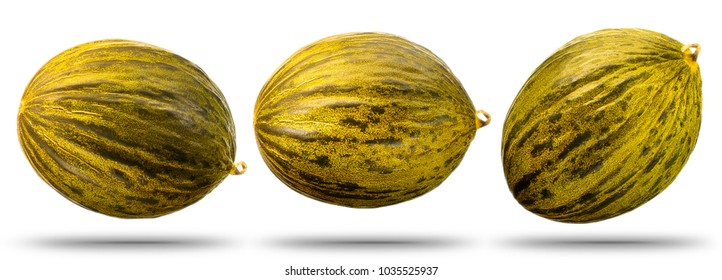 Collection of cantaloupe melon isolated on white background. With clipping path.