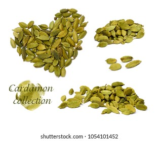 Collection of cardamom isolated on white background. Indian spices without background