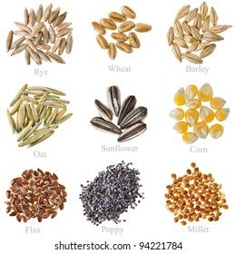 Collection Cereal Grains and Seeds  : Rye, Wheat, Barley, Oat, Sunflower, Corn, Flax, Poppy, Millet closeup isolated  on white