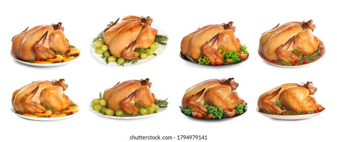 Collection of cooked turkey with different garnishes on white background. Banner design