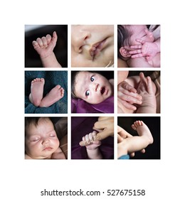 Collection of cute close up images of a newborn baby girl showing her face, toes and tiny feet