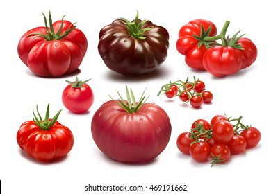 Collection of different tomato cultivars. Various shapes and colors. Heirloom tomatoes. Clipping paths, shadows separated, infinite depth of field. Design elements