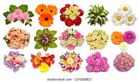 Collection of flowers calendula, mallow, roses, daisies, lilies, dahlias, peonies, delphinium and other isolated on white background. Set, collage, love. Floral pattern, object. Flat lay, top view