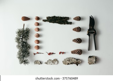 Collection of forest pieces neatly organized on white background