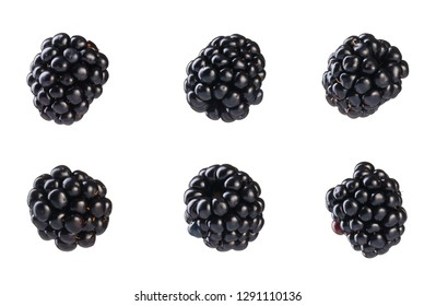 Collection of fresh blackberries. Isolated on white background.