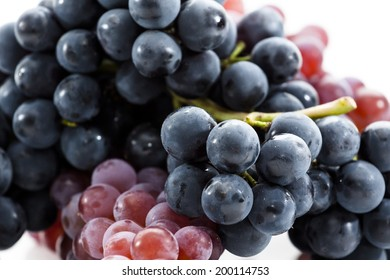 Collection of Fresh Grapes on Bright Backgroup Up Close