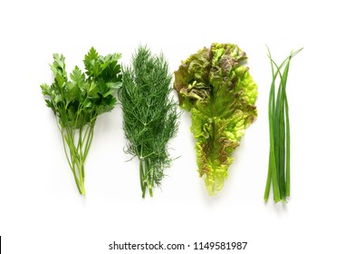 Collection of fresh green spice and herbs. Isolated green onion, parsley, dill and salad. Healthy aromatic flavour greenery.