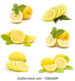 collection of fresh lemons