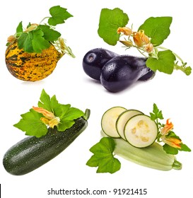 collection of fresh vegetable : zucchini , melon , aubergine ,  marrow with leaves and flowers  isolated  on a white background