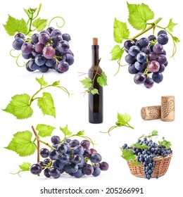 Collection of grapes, bottle and cork, Isolated on white background
