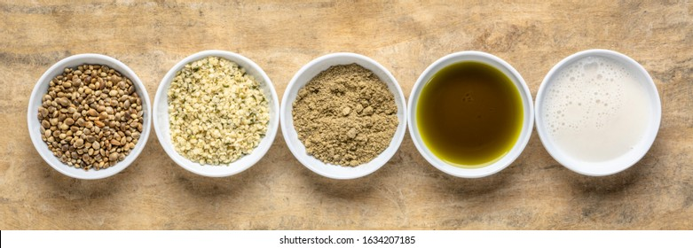 collection of hemp seed products: hearts, protein powder, milk and oil in small white bowls against textured bark paper, panoramic banner, supperfood concept