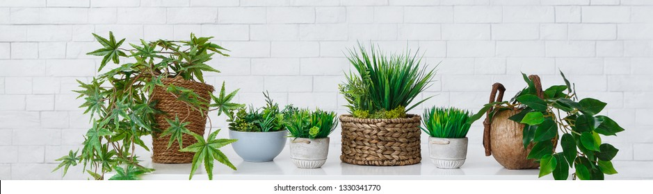 Collection of houseplants in diy pots over white brick wall, crop