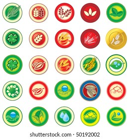 Collection of illustration web color icon