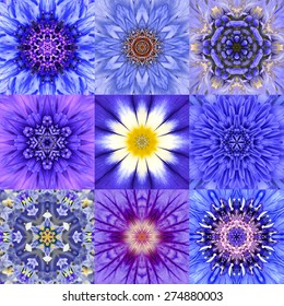 Collection of Nine Concentric Blue Flower Mandalas. Kaleidoscope Concentric design. Full Flower Background