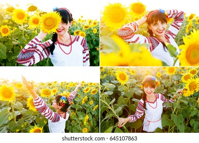 Collection of a pictures of a Beautiful young woman in national ukrainian blouse embrodery looking to camera on a sunflower plant at sunset, backlight.