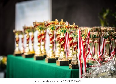collection of prize cups on the competition