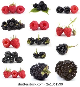 Collection of raspberry and blackberry