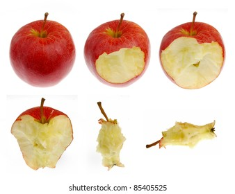 Collection of red apple in different consummation stages, Isolated on White Background