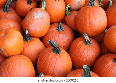 collection of ripe pumpkin background ready for carving into halloween lanterns