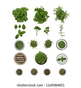 Collection of rosemary plant, parsley plan, herbs, rosemary partial, parsley partial, basilicum plant, spice mix basket and  green pepper a white background for design.