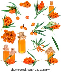 Collection of sea buckthorn (or sandthorn, sallowthorn, seaberry). Fresh ripe berries with glass bottles of oil and leaves isolated on a white background.