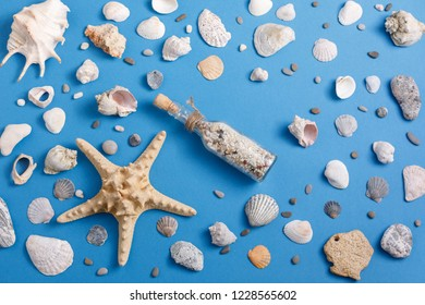 A collection of seashells on a blue background. Concept of flat lay