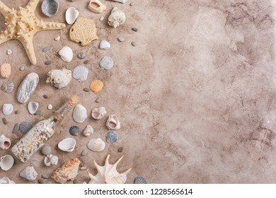 A collection of seashells on a textural background. The concept of flat lay of the site. Place under your text.