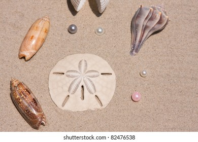 Collection of seashells and pearls on the sand