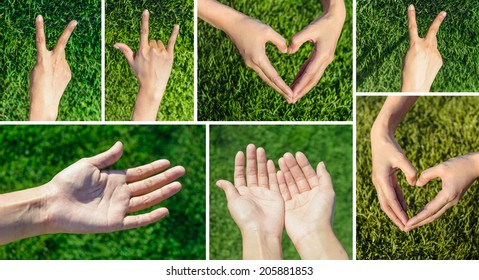 collection set asia girl hand make sign and symbol of love and pray on grass field background at outdoor sunrise
