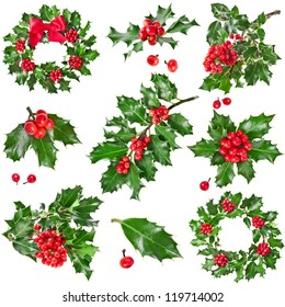 Collection set Christmas decoration of European holly ilex isolated on white background