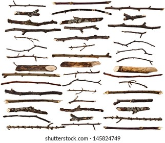 Collection set of dry wood branches isolated on a white background