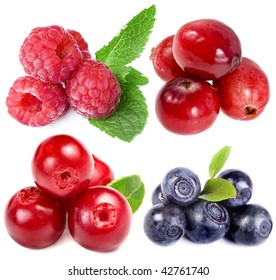 collection set of forest  berries  closeup macro  isolated on white background
