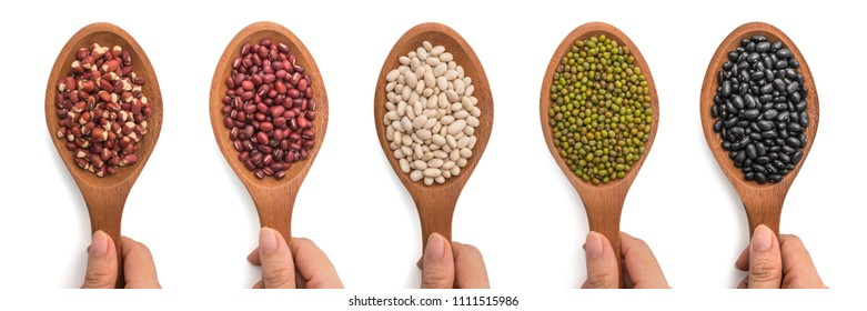 Collection set kinds of five beans in a wooden spoon on a woman's hands with isolated a white background. Top view.