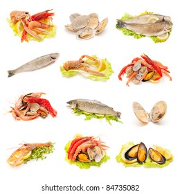 collection of shellfish and fish on white background