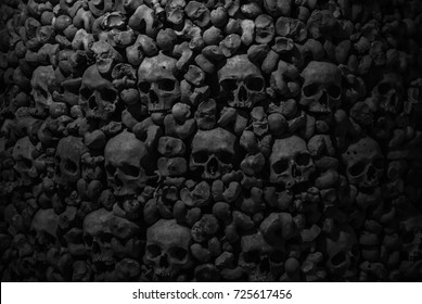 Collection of skulls and bones covered with spider web and dust in the catacombs. Numerous creepy skulls in the dark. Abstract concept symbolizing death, terror, and evil.