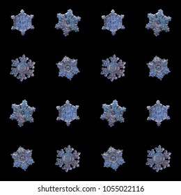 Collection of snowflakes isolated on black background. Macro photo of real snow crystals: large stellar dendrites with complex, ornate shapes, fine hexagonal symmetry, elegant arms and glossy surface.